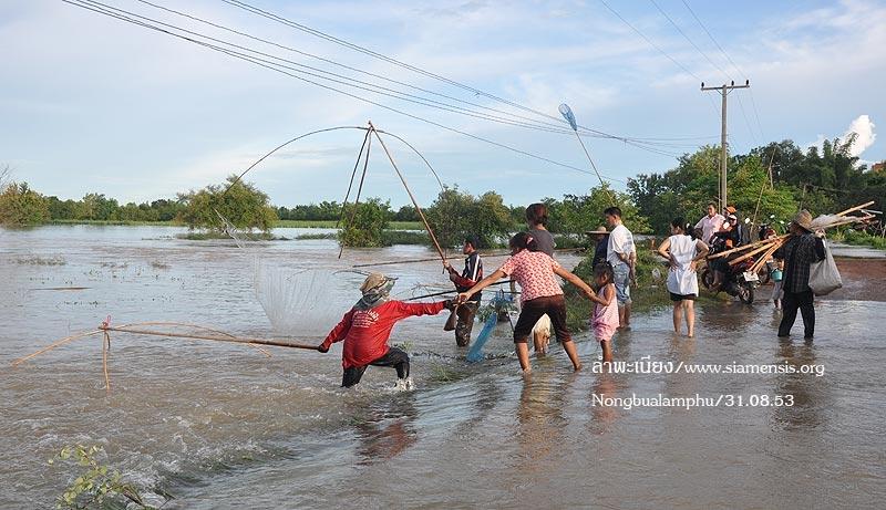 ผู้ใหญ่ก็สนุกกับการหาปลา ผู้มาชมก็สนุกไปด้วย