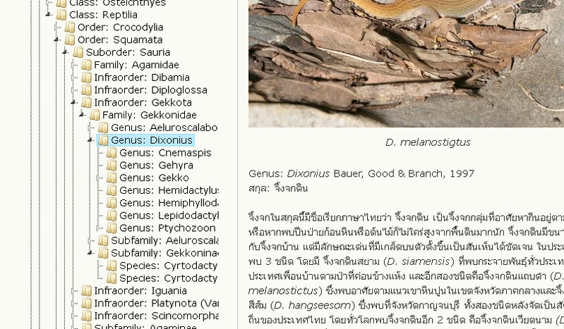 2012-08-10_133221.jpg