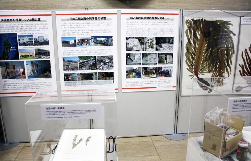 เรื่องเล่าจากสาขา Sendai ที่ผจญ tsunami มา