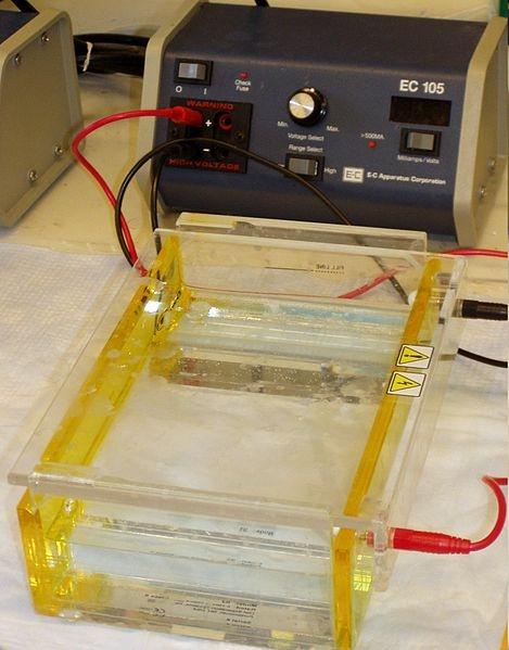 #หน้าตา Gel electrophoresis ครับ (ที่มา http://en.wikipedia.org/wiki/File:Gel_electrophoresis_apparatus.JPG)