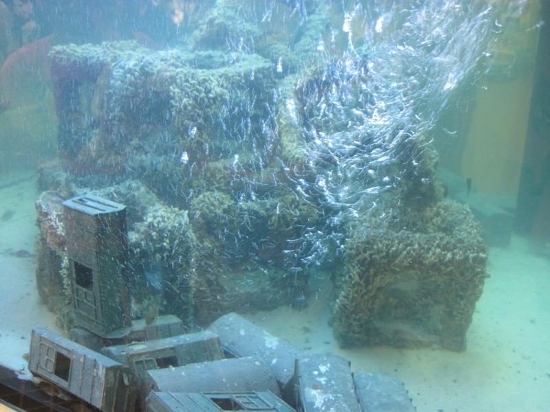 ปะการังเทียมจำลอง