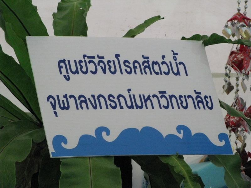 ศูนย์วิจัยโรคสัตว์น้ำ ฯ