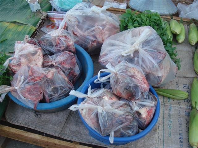 หัวปลาตัดแบ่ง ถุงละ 10 บาท ถูกมาก ( แม่ค้าบอกว่าเป็นหัว ปลาเผาะ )
