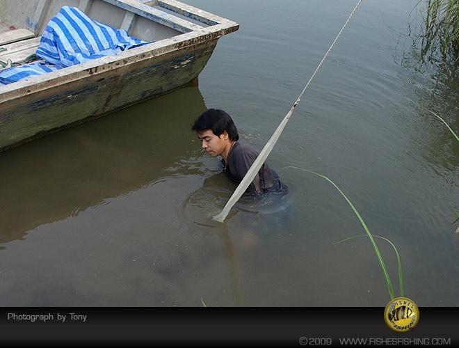 fishesfishing18.jpg