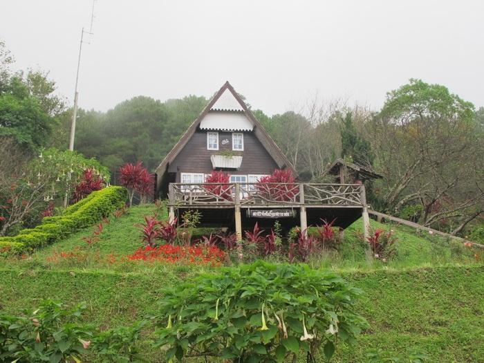 บ้านหลังใหญ่ ที่ข้างหลังเป็นต้นนางพญาเสือโคร่ง