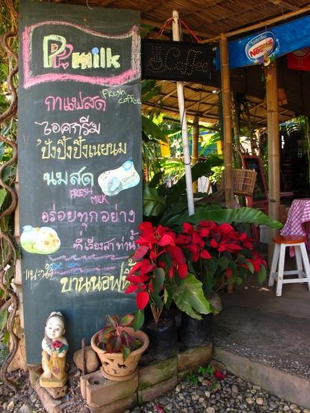 P.P. milk