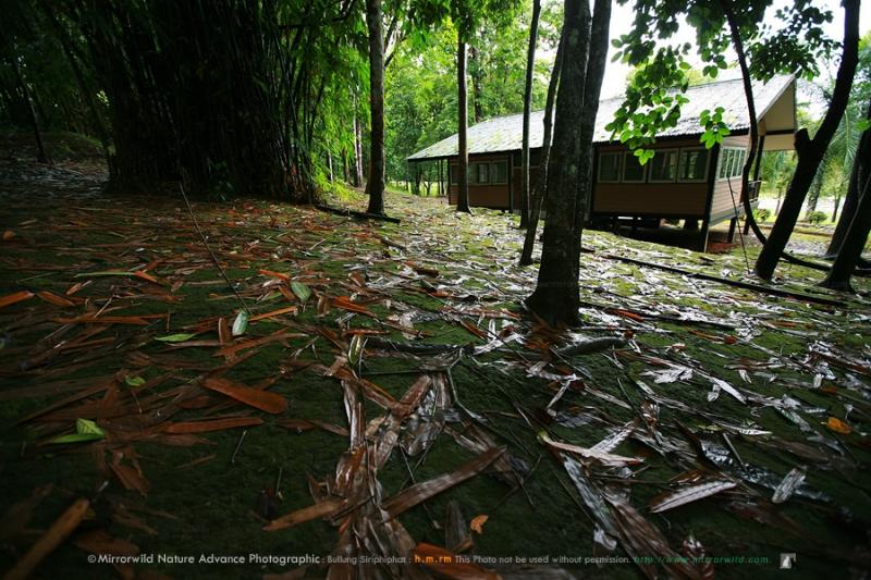 kanjanburi-keunkravia-36.jpg