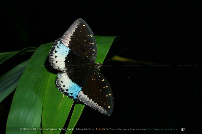 kanjanburi-keunkravia-56.jpg