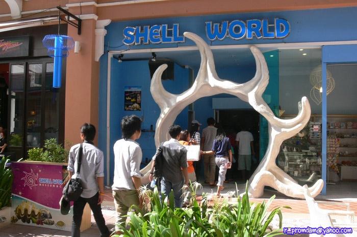 ในวันนั้นก็ได้ไปแวะที่พิพิธภัณฑ์หอย ของพี่จอม ที่ห้างจังซีลอน