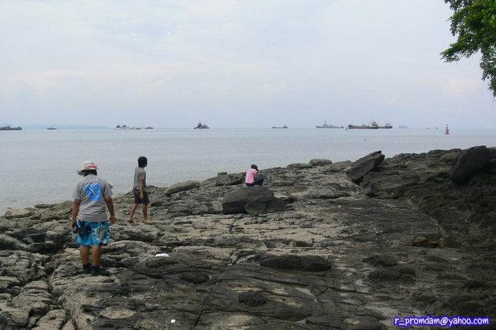 พื้นที่ทำแล็บของน้องๆ มองออกไปทางทะเล