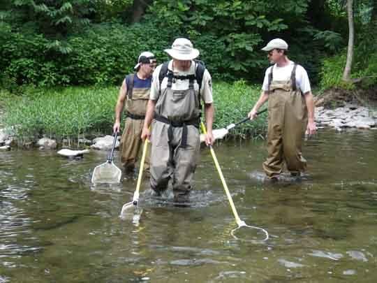 วิธีจับปลา เนื่องจากเป็นลำธารน้ำไหลแรงก็ต้องมีคนตามช่วยจับปลาด้วย