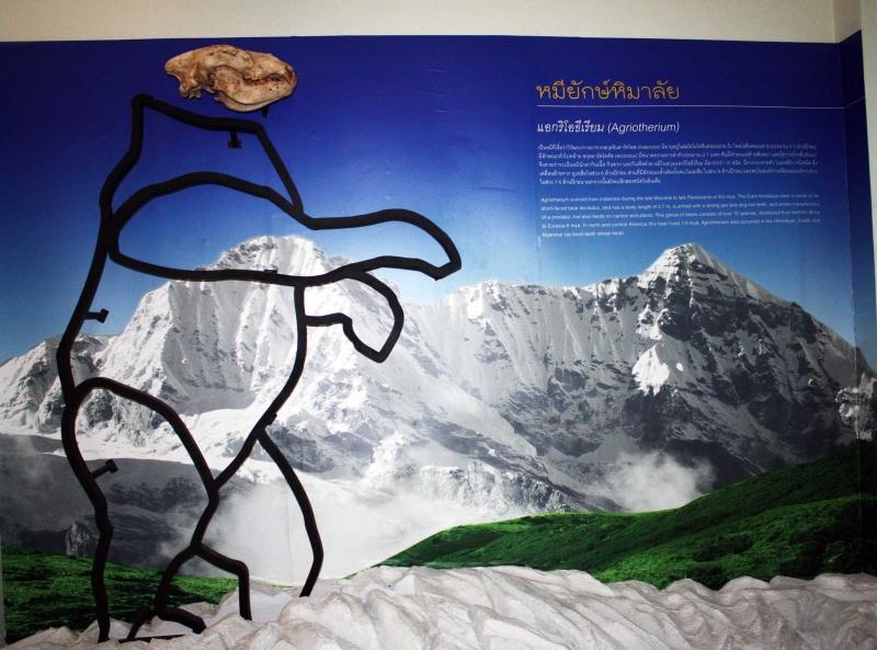 หมียักษ์ Agriotherium